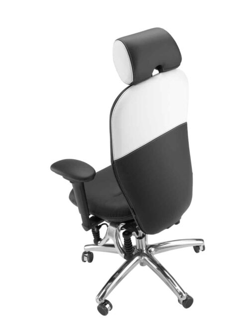 "Bioswing bureaustoel 460 ""Black Edition"" rug"
